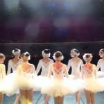 ICONA - Rassegna Danza